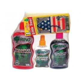KIT LAVADO 1 (Shampoo esp activa+Resaltador+Reviv vinilo+Esponja+Pino)